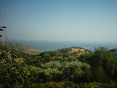 Coast view from Akamatra