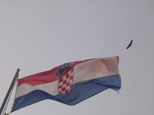Bandiera croata: in cielo un grifone