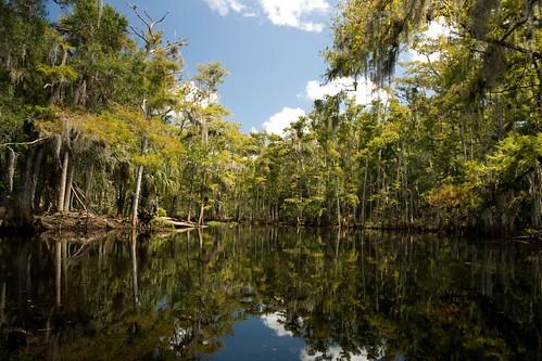 fisheating creek september 21 080
