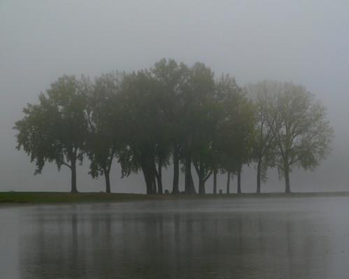 Grays lake grove pre dawn fog grays lake park des moine flickr grays lake grove pre dawn fog by don3rdse publicscrutiny Image collections