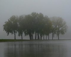 Gray's Lake Grove-Pre-Dawn Fog (Don3rdSE) Tags: lighting morning trees mist lake reflection nature water fog sunrise landscape natural iowa best elite ia sensational serene predawn breathtaking pratibimb waterscape goldenglobe desmoinesiowa sangli flickrsbest beautifulexpression fineartphotos abigfave worldbest ultimateshot favemegroup9 pratibimbsangli amazingamateur overtheexcellence platinumheartaward canong9 flickrestrellas thebestofday gnneniyisi multimegashot absolutelystunningscapes bestofflickrsbest breathtakinggoldaward 100commentgroup bestflickrphotography topqualityimagesonly oraclex don3rdse desmoinesgrayslakepark flickrclassique breathtakinghalloffame desmoinesisnotboring wwwdesmoinesisnotboringcom