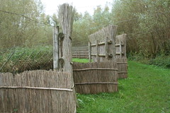 Biesbosch (Marianne de Wit) Tags: dutch landscape nederlandse landschappen nationalparkdehogeveluwe nederlandselandschappen