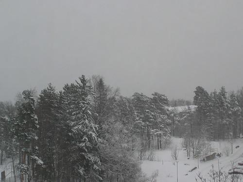 Lunta Laajasalossa