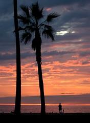 It's a Beautiful Day (jakerome) Tags: california sunset delete10 clouds umbrella delete9 delete5 delete2 losangeles delete6 delete7 places delete8 delete3 delete delete4 save save2 pacificocean palmtree venicebeach barackobama i500 yeswecan tamronaf70300mmf456ldmacro572d sombw prewallpaperjake wptall