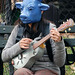 Blue Cow Playing Guitar