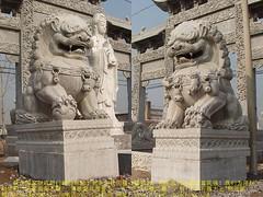 您好:我们现在雕刻的石雕北京狮