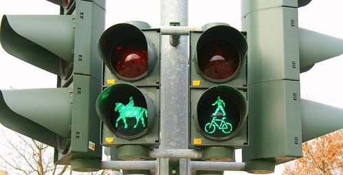 multifunctional traffic light