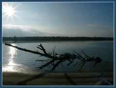 Duna (Bánhidai Bea) Tags: duna dunaszentbenedek