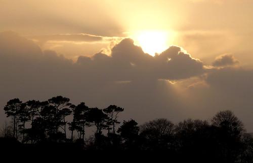 Sunset 23Nov08