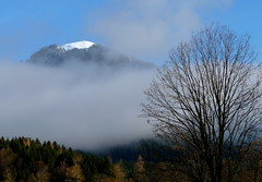 Schnberg (1621m) (Claude@Munich) Tags: mist mountain berg fog germany geotagged bayern deutschland bavaria nebel oberbayern upperbavaria schnberg fleck lenggries claudemunich winkl mangfallgebirge geo:lat=47639319 geo:lon=11593795