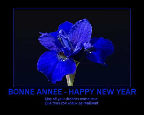 BONNE ANNEE ! - HAPPY NEW YEAR !  :-)