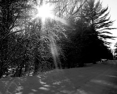Ray of light   :) (**Ms Judi**) Tags: road trees winter light shadow sunlight white snow black cold ice beautiful wisconsin frozen midwest crystals ray shadows shine view path awesome freezing scene iced rays lovely curve magical soe sunray peshtigo enchanting msjudi abigfave brrrrrrrrrrrrr happynewyearseve icedtrees goldstaraward rubyphotographer judistevenson