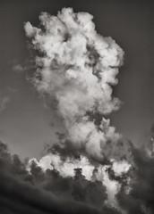 Cloud (artblackandwhite) Tags: ireland blackandwhite bw abstract landscape kerry conceptual platinum limitededition palladium largeformat westcork artprint contactprint digitalnegative altprocess alternativeprocesses paradisi lucaparadisi fineartplatinum