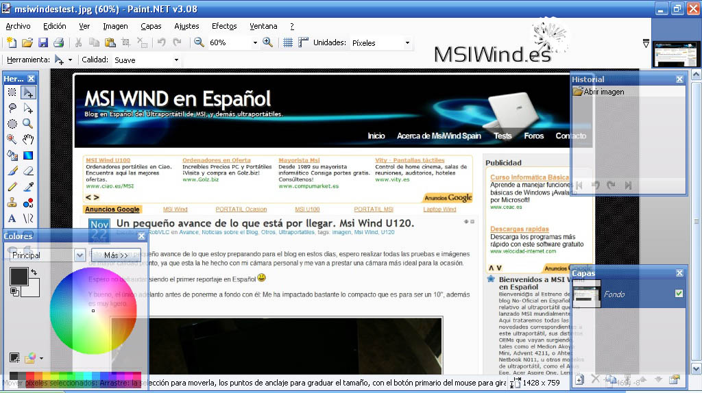 paintnettestwind copia