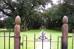 Oak Alley Plantation, Louisiana (Onasill ~ Bill Badzo) Tags: bon trees house building st parish architecture river mississippi movie greek james la us gate wroughtiron delta places landmark tourist historic plantation register mansion tours antebellum attraction oaktrees apps riverroad oakalley sugarcane revival louisianna ipad sejour vacherie nrhp onasill