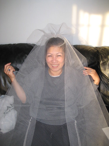diy birdcage veil for wedding