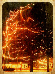 Bedford Common Christmas (kma611) Tags: original after hours creased picgrunger