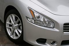 2009 nissan Maxima pictures
