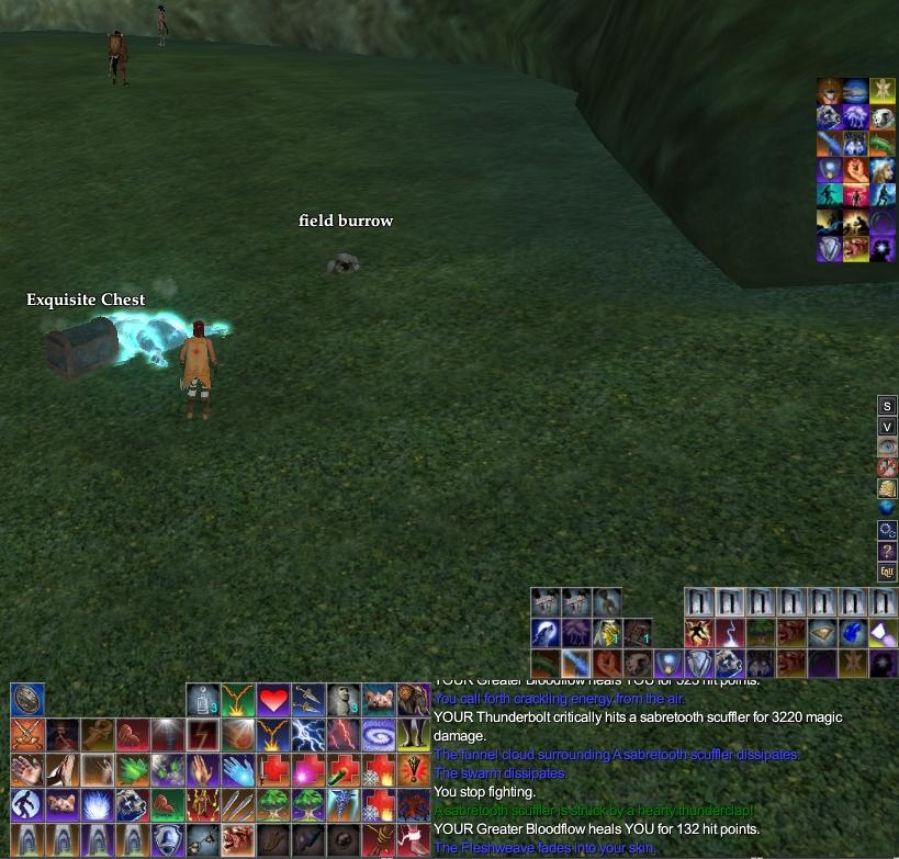 Spell Rotation - Does it get more interesting? | EverQuest 2 Forums