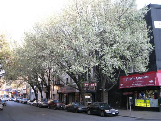 Brookspring -- Fulton Street