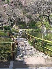Hojo-ike: Garden Path