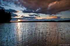 Rain at sunset (Rob Orthen) Tags: sunset sky cloud lake rain clouds suomi finland reeds landscape nikon europe sundown rob raindrops scandinavia maisema vesi sysm kes d300 jrvi auringonlasku gnd salajrvi 175528 leefilter orthen lakefinland roborthenphotography