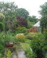 Too wet to garden! (wonky knee) Tags: uk wet rain rainyday shropshire shrewsbury inashrewsburygarden wonkyknee