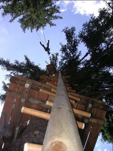 Jump au fun forest