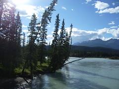 Athabasca River (joadc) Tags: river athabasca