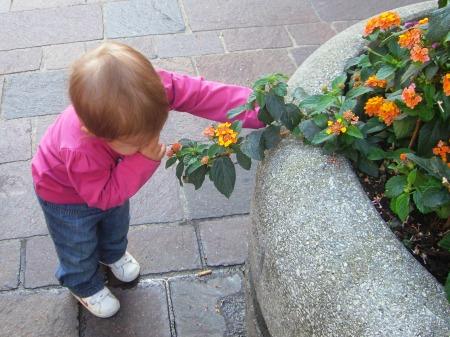 Blumen schnuppern