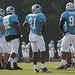 Carolina Panthers Training Camp