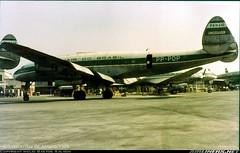 Lockheed L.049-46-27 Constellation (J Silveira Junior) Tags: airplane connie avio lockheed constellation panair bandeirante pppdp panairdobrasil