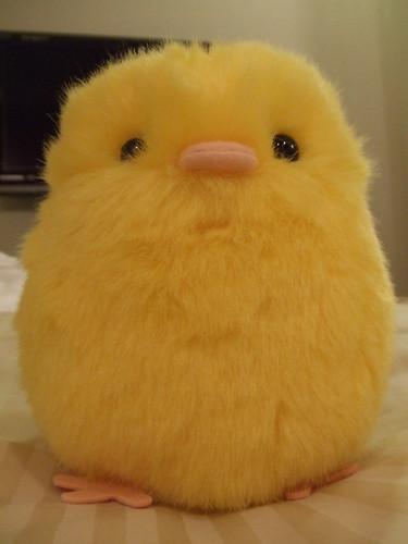 Yellow Chicken by sherylsheryl, on Flickr
