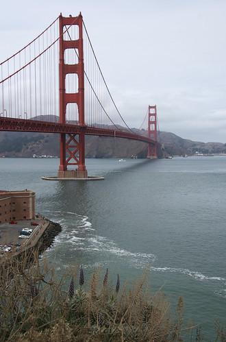 bridge_vert_0252