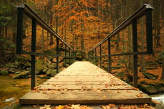A bridge to the autumn (arminMarten) Tags: wood bridge autumn forest river wasserfall herbst czechrepublic brcke fluss wald    riesengebirge harrachov  tchechischerepublik