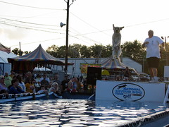 100 Things to see at the fair #69: National Diving Dogs