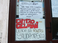 entero-gelmini
