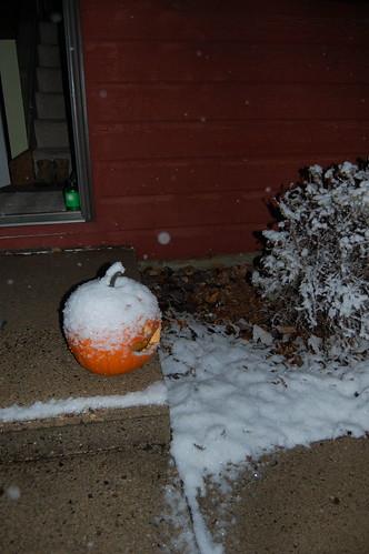 snowy pumpkin!