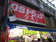 日光輕井澤東京5日 316