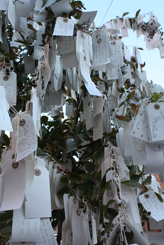 """Wish Tree for Pasadena"" by Yoko Ono at One Colorado Courtyard, 11-06-08 - 12 by you."