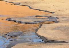 kustlijn (ei) Tags: lake holland ice dutch frozen meer bevroren hiking wandelen dunes nederland duinen zandvoort kennemerduinen ijs bloemendaal overveen kennemerland veldenwegen