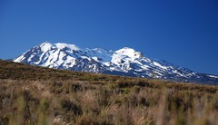 Mt Ruapehu in the distance Photo