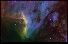 IC5070 Pelican Nebula (jesionkiewicz) Tags: pelican nebula astrophotography astronomy universe deepspace ic5070 Astrometrydotnet:status=solved competition:astrophoto=2009 astro:name=thestar57cyg astro:name=pelicannebula astro:name=thestar56cyg astro:name=ic5070 Astrometrydotnet:version=11264 astro:RA=312930762675 Astrometrydotnet:id=alpha20090500455560 astro:Dec=444143417764 astro:pixelScale=310 astro:orientation=206 astro:fieldsize=6603x4302arcminutes