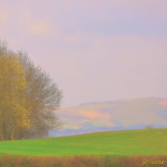 THE AROMA OF THE LANDSCAPE (HiS***PhotoArt) Tags: nikond90 yourwonderland