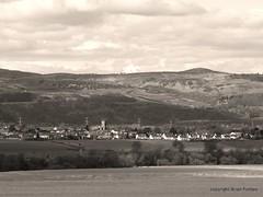 Errol (B4bees .(2m views)) Tags: monochrome rivertay perthshire pylons errol carseofgowrie