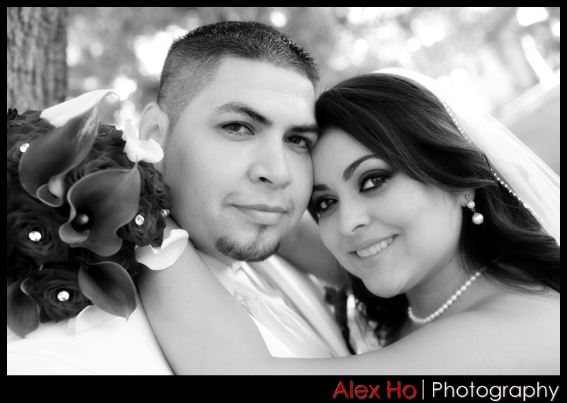 4562961521 ac46ba3f0c o Denise and Cisco Wedding in Mountain View and San Jose