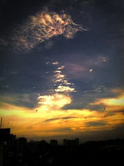 fading away (Bivaa :)) Tags: nokia afternoon thesky mobilecamera 2700 fadinaway