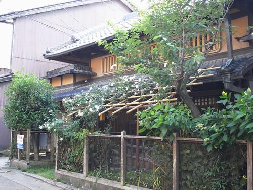 田村青芳園茶舗の隣-02
