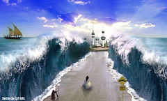 road of kuwait..   (  T_ !  ) Tags: blue sea sky man tower love girl cat design earth dream kuwait q8
