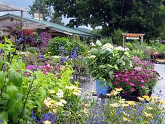 gardenshop1